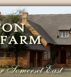 Somerset East Accommodation Guest Farm
